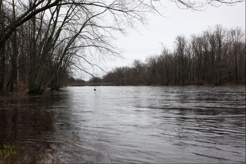 Jump River Waterfront Acreage for Sale
