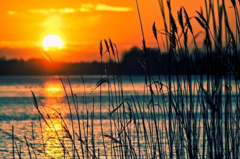 Lake Associations